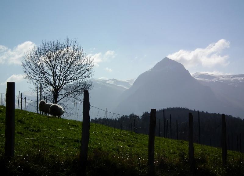 Пролгулка по районам Bostaitzeta – Baliarrain